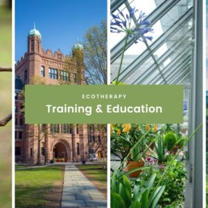 Ecotherapy Training: 10 Programs Where You Can Earn A Certificate