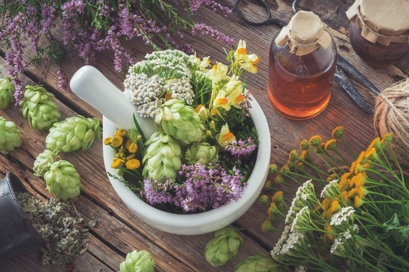 medicinal herbs and flowers on a wooden table in a mortar and pestle