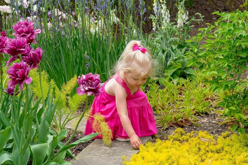 small girl in pink dress touching the plants in a sensory garden