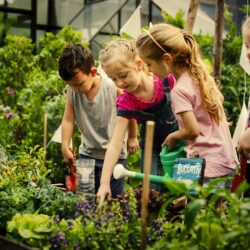What Are the Benefits of Nature for Children? We Explore The Latest Research