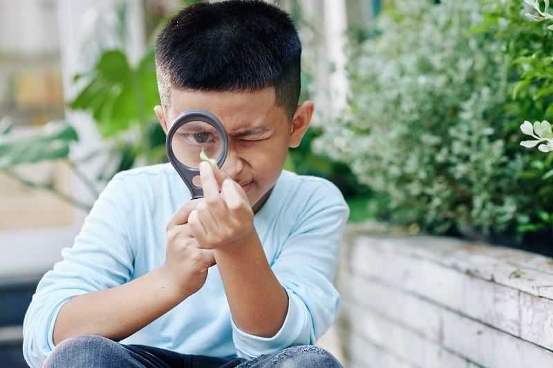 young boy in nature with a magnifying glass looking at plants up close outdoors