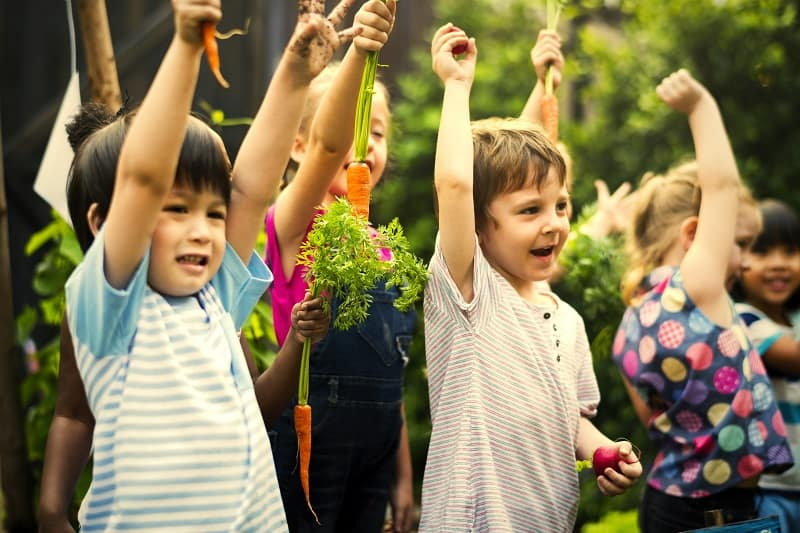 group of children holding up freshly picked vegetables from their garden - gardening is a popular nature activity for your kids