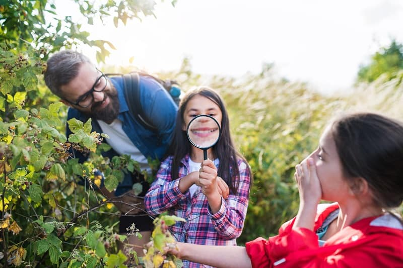 children learning in nature - young child holds up a magnifying glass to view berry bush up close