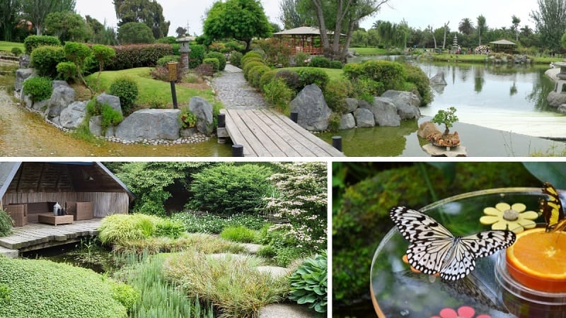 collage of three meditation garden ideas - a japanses garden, butterfly garden and small shelter overlooking a pond