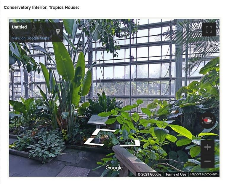 A virtual tour of the Conservatory inside Tropics House: