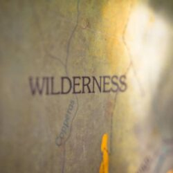 Is Wilderness Therapy or Adventure Therapy Better?