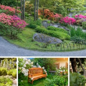 5 Types of Therapeutic Gardens to Heal the Body and Soul