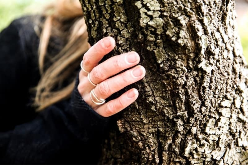 Woman's hand touching the bark of a tree