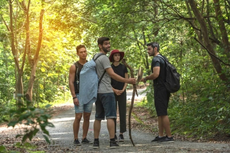 forest bathing with a guide
