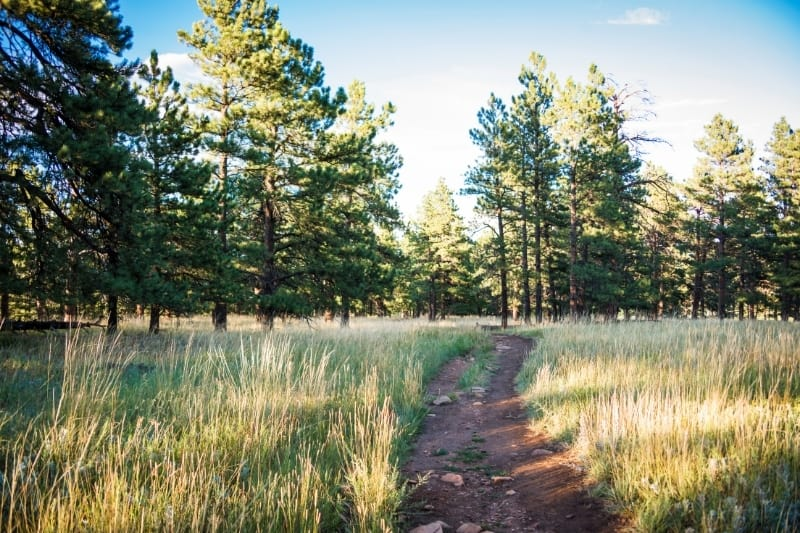 Nature trail in Boulder Colorado